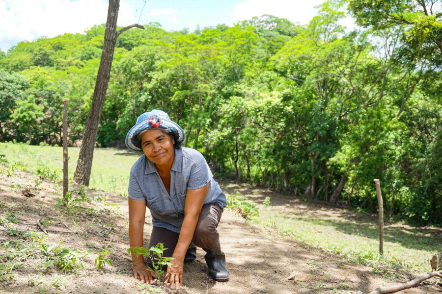 Taking Root Farmer Planting Trees in Nicaragua