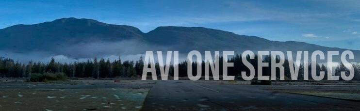 AVI ONE logo