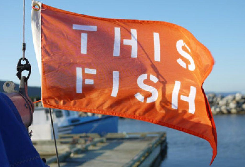 ThisFish